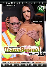 Transsexual Eye Candy 11 (2019) (174954.8)